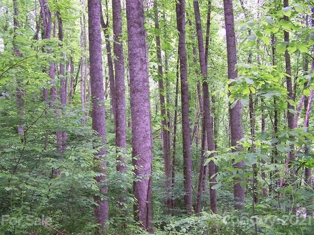 000 Crawford Cemetery Road, Sylva, NC 28779 (#3749348) :: Carver Pressley, REALTORS®