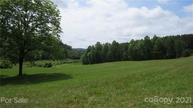 764 Lattimore Road, Rutherfordton, NC 28139 (#3749409) :: Scarlett Property Group