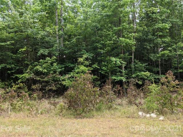 000 Meandering Lane #75, Lincolnton, NC 28092 (#3749480) :: The Mitchell Team