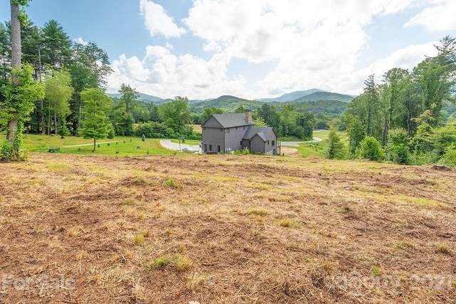 148 Olivia Trace Drive, Fletcher, NC 28732 (#3749533) :: LePage Johnson Realty Group, LLC