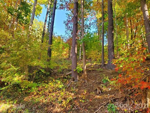 99999 Sunset Summit S-12, Asheville, NC 28804 (#3750001) :: Stephen Cooley Real Estate Group
