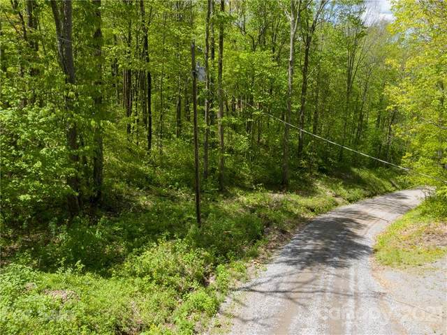 00 Sara Ridge Road, Waynesville, NC 28786 (#3750428) :: Homes with Keeley | RE/MAX Executive