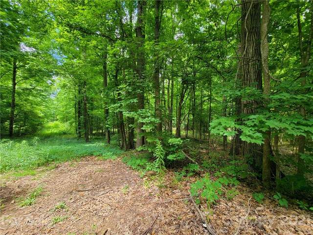 TBD Watts Avenue, Concord, NC 28027 (#3750672) :: IDEAL Realty