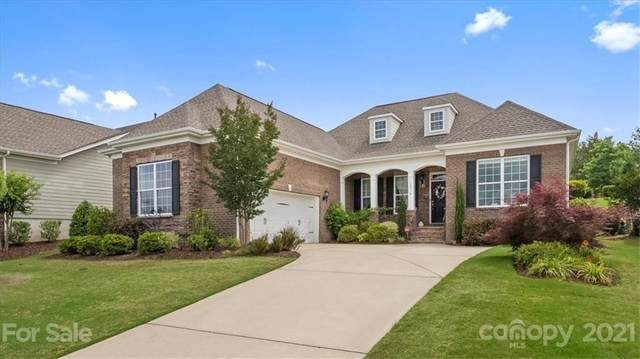 15016 High Bluff Court, Charlotte, NC 28278 (#3750729) :: Lake Wylie Realty
