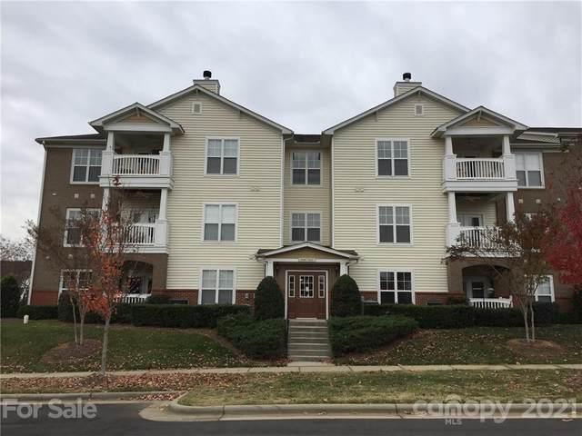 9117 Mcdowell Creek Court, Cornelius, NC 28031 (#3751348) :: Cloninger Properties