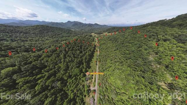 267 Holcombe Branch Road, Weaverville, NC 28787 (#3751385) :: Keller Williams Professionals