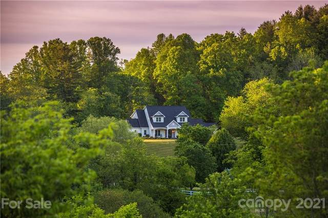 400 Ray Hill Road, Mills River, NC 28759 (#3751433) :: Caulder Realty and Land Co.