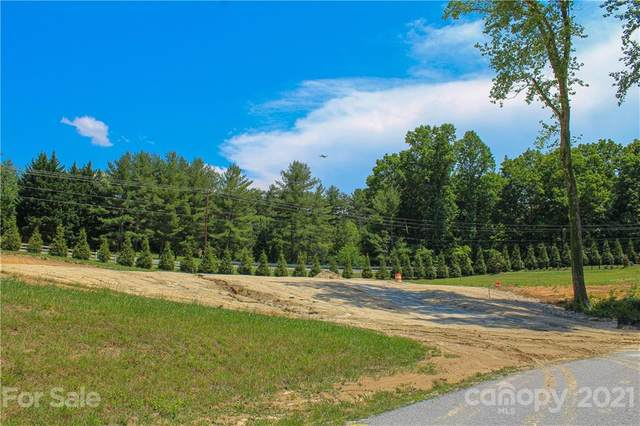 119 Almond Branch Drive #46, Hendersonville, NC 28791 (#3751436) :: The Premier Team at RE/MAX Executive Realty