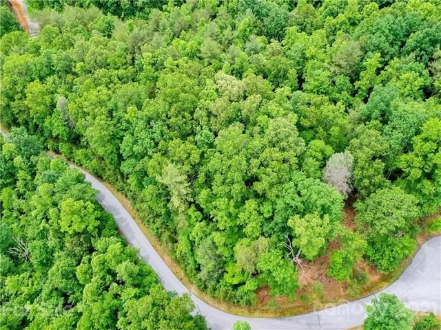 343 Falling Leaves Lane, Hendersonville, NC 28792 (#3751450) :: The Snipes Team | Keller Williams Fort Mill