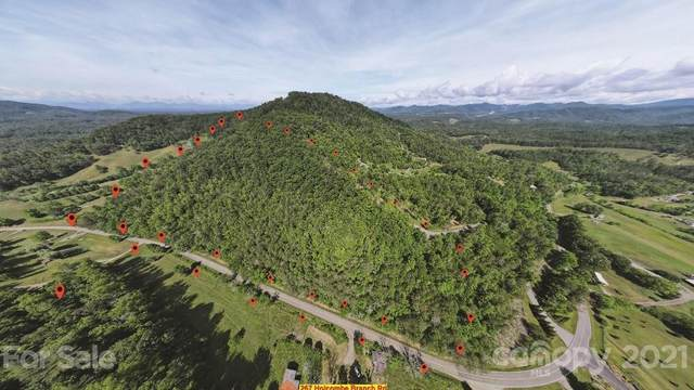 267 Holcombe Branch Road, Weaverville, NC 28787 (#3751547) :: Keller Williams Professionals
