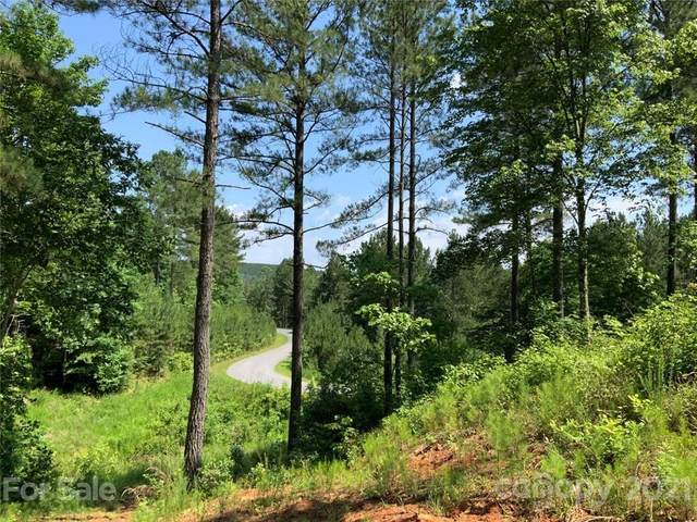 1317 Lake Vista Drive NE 10B, Connelly Springs, NC 28612 (#3752254) :: LePage Johnson Realty Group, LLC