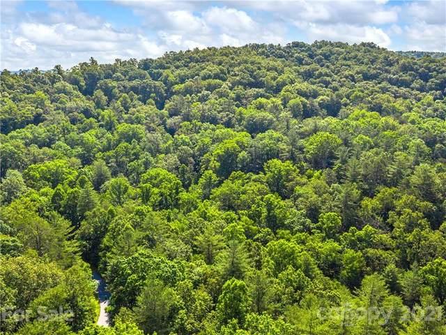 LOT 9 W Turkey Paw Trail, Hendersonville, NC 28739 (#3752336) :: MOVE Asheville Realty