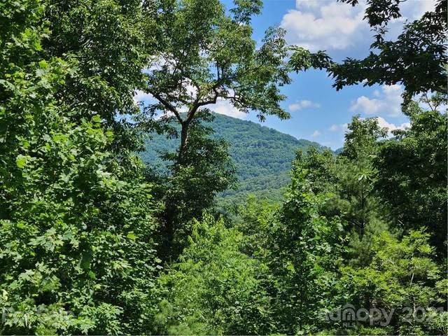 99999 Black Oak Drive, Asheville, NC 28804 (#3752498) :: Besecker Homes Team