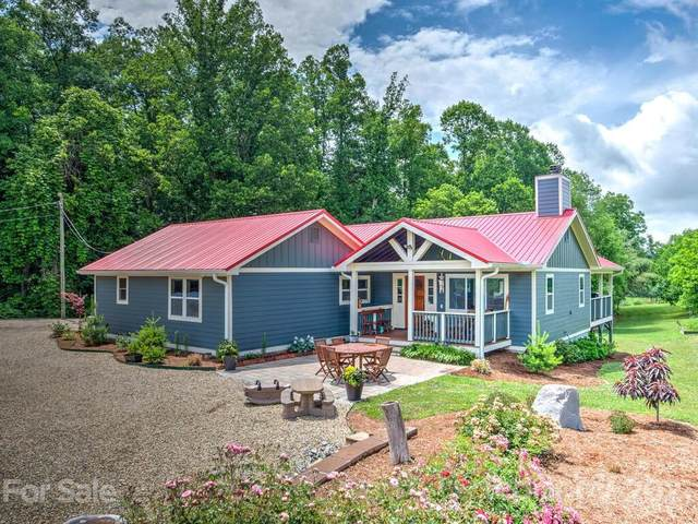 150 Raspberry Point Lane, Flat Rock, NC 28731 (#3752601) :: BluAxis Realty
