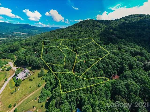305 Erwin Lane, Waynesville, NC 28785 (#3752694) :: Stephen Cooley Real Estate Group