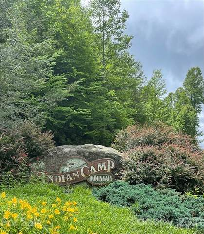 000 Serenity Trail #99, Rosman, NC 28772 (#3752956) :: Besecker Homes Team
