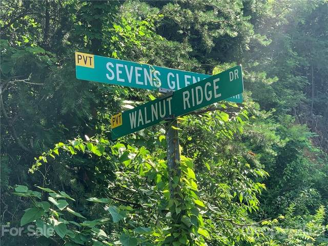 1559 Seven Glens Drive, Weaverville, NC 28787 (#3753129) :: Scarlett Property Group