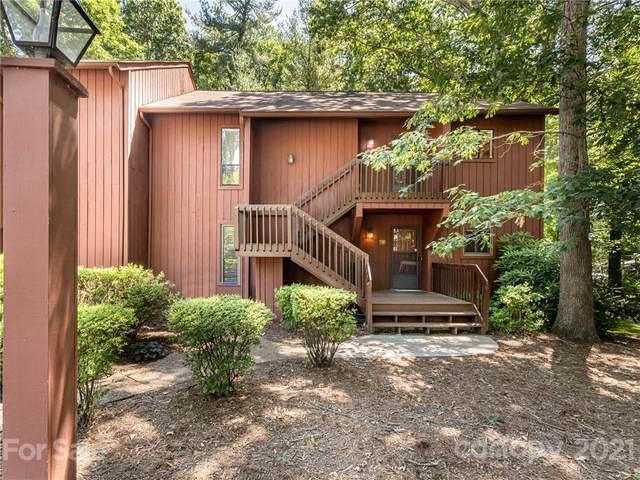 113 Cedar Forest Trail, Asheville, NC 28803 (#3753139) :: The Mitchell Team