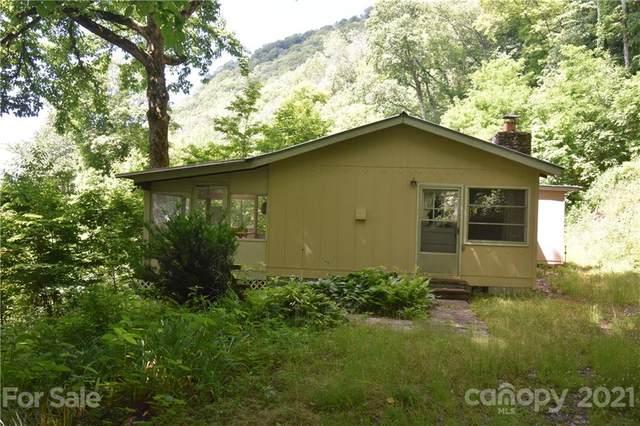 321 Coyote Trail, Sylva, NC 28779 (#3753176) :: Carmen Miller Group