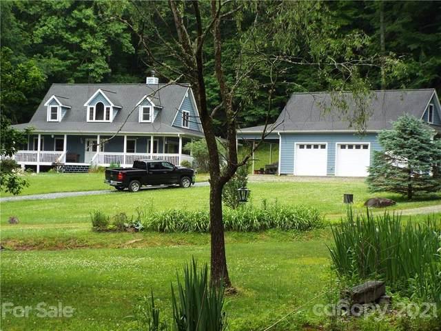 226 Wildcat Mountain Trail, Sylva, NC 28779 (#3753179) :: Carver Pressley, REALTORS®