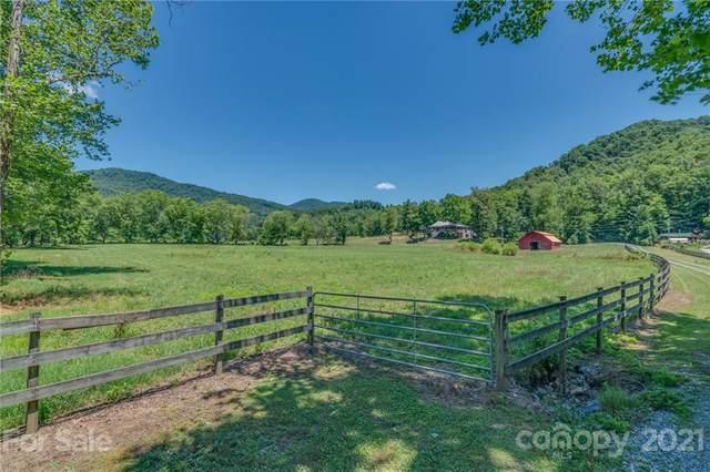 2150 Cedar Creek Road, Lake Lure, NC 28746 (#3753235) :: MartinGroup Properties