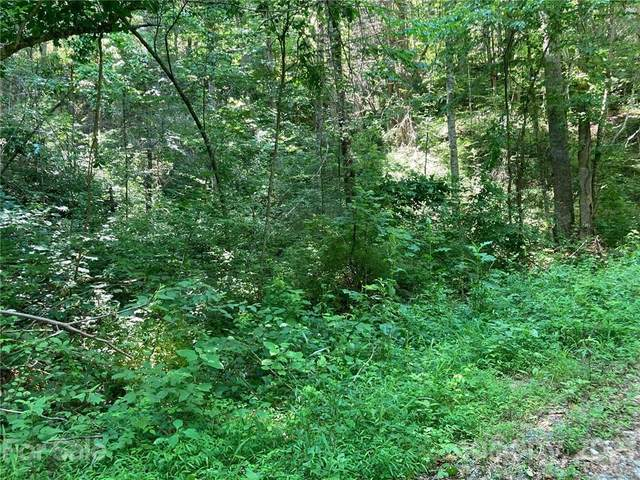 0 Gallimore Road, Flat Rock, NC 28731 (#3753327) :: Caulder Realty and Land Co.