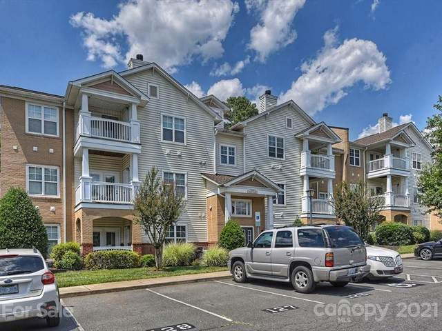 16336 Redstone Mountain Lane, Charlotte, NC 28277 (#3753598) :: Home and Key Realty