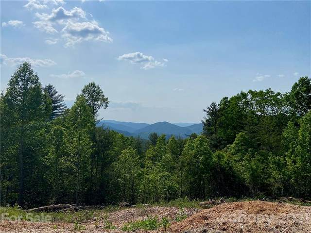 12 Clearview Lane #12, Marshall, NC 28753 (#3753729) :: Willow Oak, REALTORS®