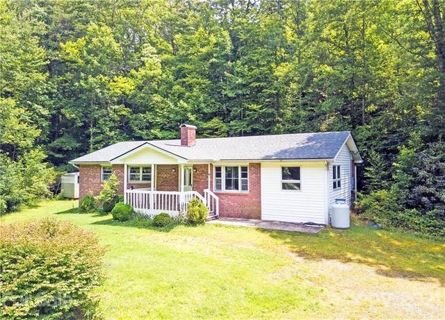 8133 Cascade Lake Road, Cedar Mountain, NC 28718 (#3753762) :: Homes Charlotte