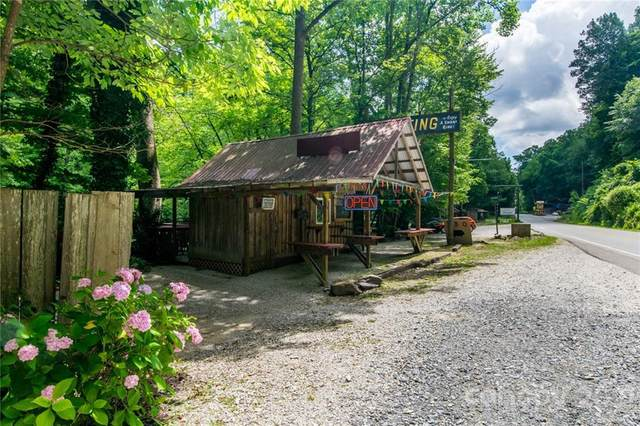 14686 and 14690 Hwy 19 Highway, Bryson City, NC 28713 (#3753845) :: BluAxis Realty