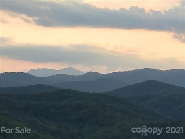 0000 Little Rock Canyon Road, Lenoir, NC 28645 (#3753879) :: Hansley Realty
