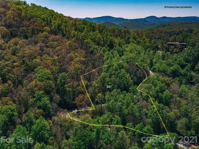 LOT 6B Flora Rose Trail, Asheville, NC 28803 (#3753970) :: The Mitchell Team