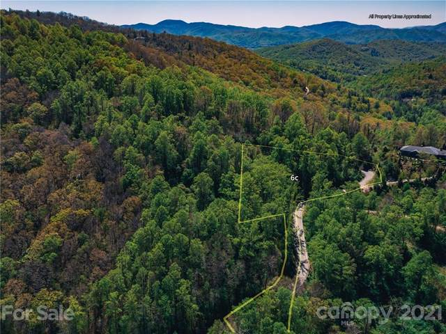 LOT 6C Flora Rose Trail, Asheville, NC 28803 (#3753993) :: The Mitchell Team