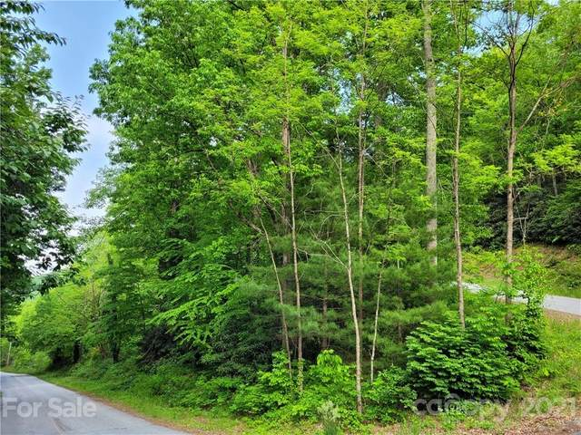 1009 Holiday Drive, Hendersonville, NC 28739 (#3754597) :: Mossy Oak Properties Land and Luxury
