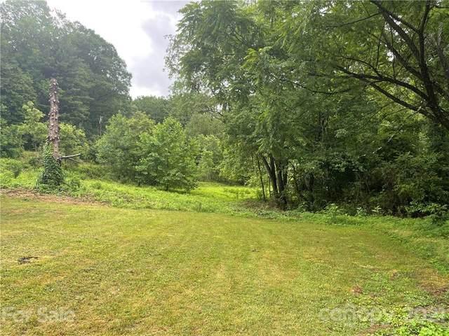 18 Welch Road, Candler, NC 28715 (#3754678) :: Willow Oak, REALTORS®