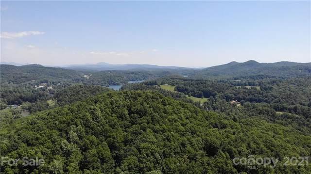 0000 Camp Cove Road #17, Zirconia, NC 28790 (#3754694) :: Willow Oak, REALTORS®