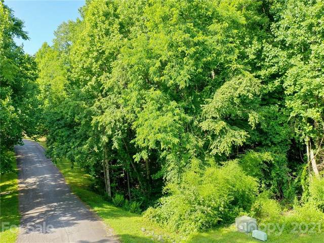 276 Coopers Drive, Hendersonville, NC 28739 (#3754909) :: Mossy Oak Properties Land and Luxury