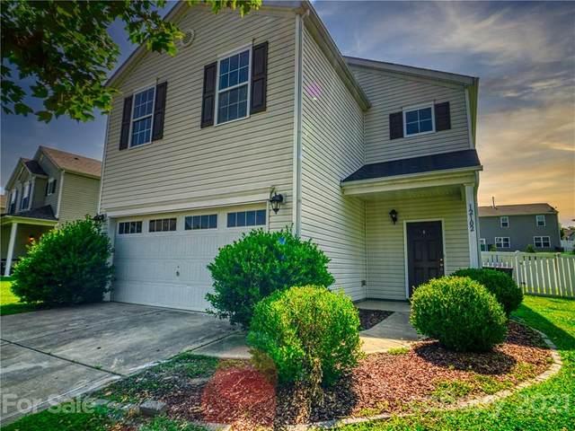 12102 Downy Birch Road, Charlotte, NC 28227 (#3757427) :: Cloninger Properties