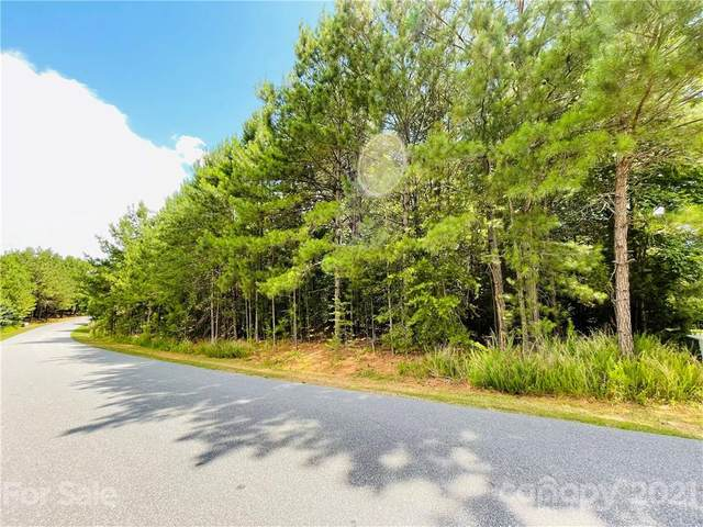 118 Pier Point Drive #16, Stony Point, NC 28678 (#3757636) :: MartinGroup Properties