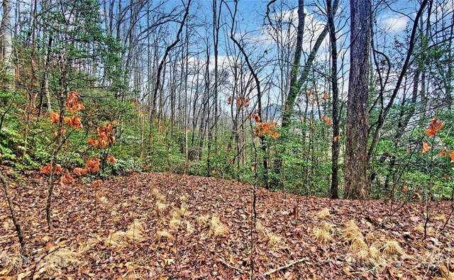361 Little Bit Trail, Whittier, NC 28789 (#3757671) :: Scarlett Property Group