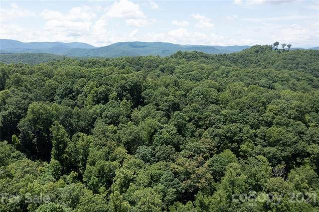 0 No address assigne Shady Oak Lane 28/29, 30, Hendersonville, NC 28739 (#3758174) :: Mossy Oak Properties Land and Luxury