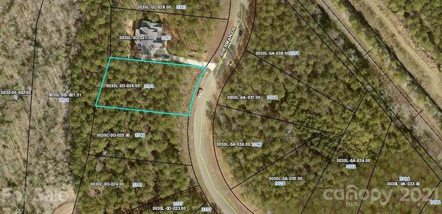 3355 Sherman Drive, Lancaster, SC 29720 (#3758490) :: Stephen Cooley Real Estate Group