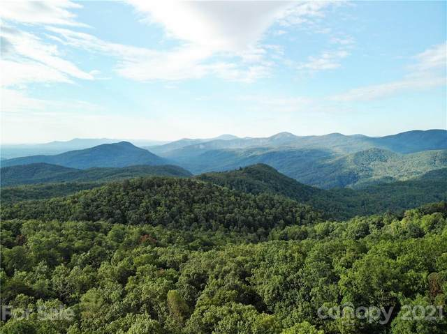LOT 1011 Yellow Finch Lane #1011, Old Fort, NC 28762 (#3759225) :: Scarlett Property Group