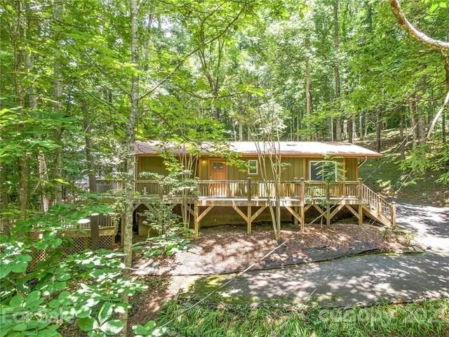 106 Buffalo Trail, Asheville, NC 28805 (#3759515) :: Cloninger Properties