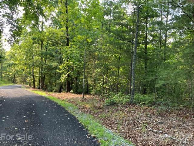 5 Colton Lane, Mill Spring, NC 28756 (#3759705) :: Keller Williams Professionals