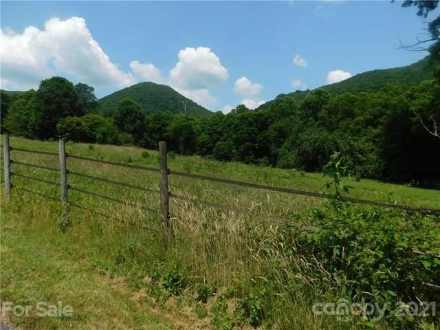 00 Bald Creek Road 14 & PT#15, Clyde, NC 28721 (#3759833) :: Hansley Realty