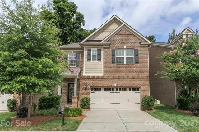 4319 Sheffield Park Avenue, Charlotte, NC 28211 (#3760163) :: Mossy Oak Properties Land and Luxury