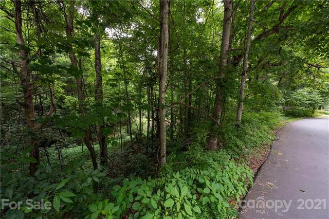 17 Fairview Pointe Drive, Fairview, NC 28730 (#3760273) :: Home Finder Asheville