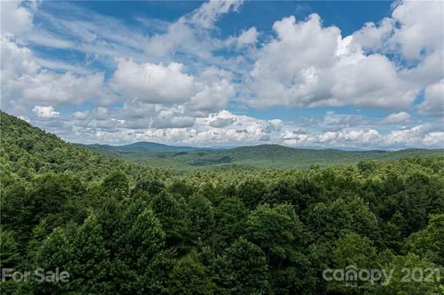138 W Chestnut Ridges Road #7, Hendersonville, NC 28739 (#3760663) :: LePage Johnson Realty Group, LLC
