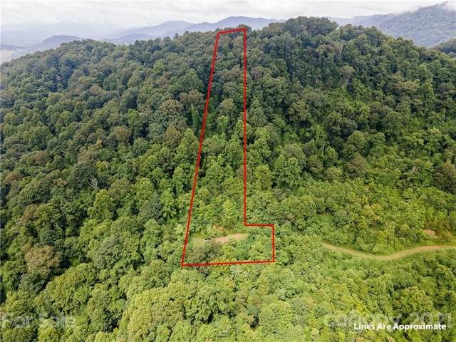 99999 Bear Wallow Trail, Leicester, NC 28728 (#3760709) :: Mossy Oak Properties Land and Luxury